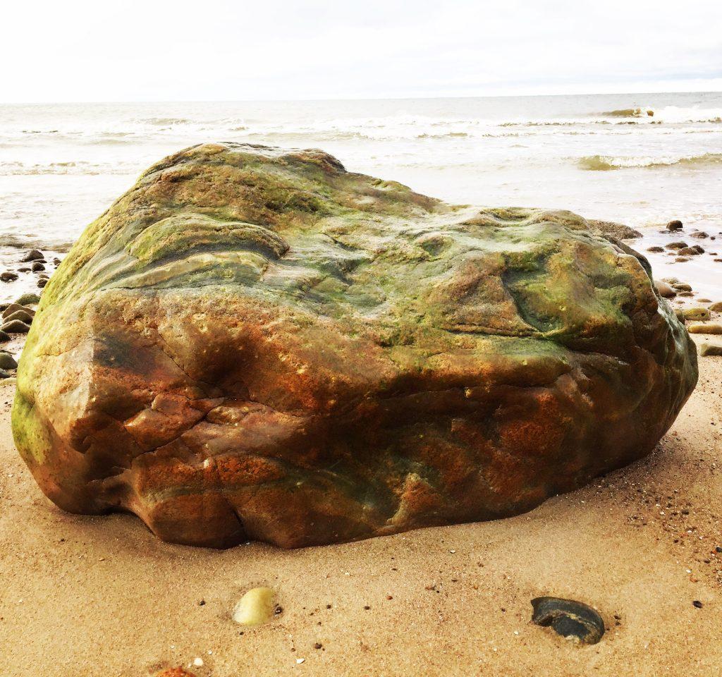 Rock looking like Moon Meteorite